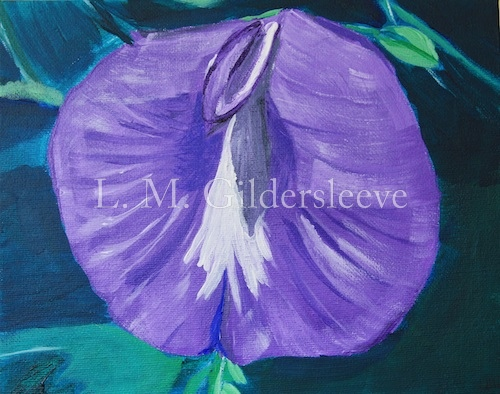 painting of a butterfly pea