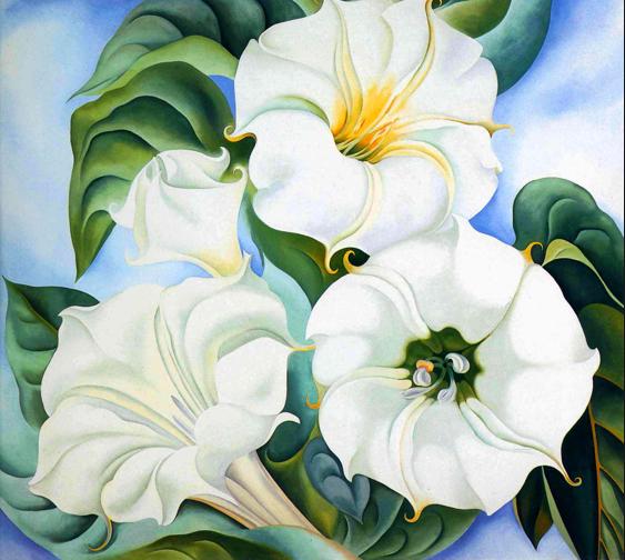 Georgia O'Keeffe's Jimson Weed 3