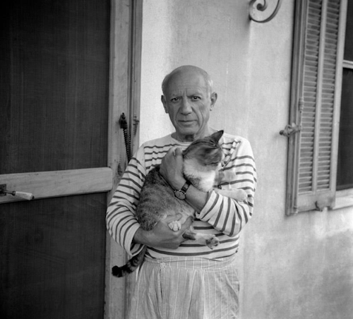 the artist Pablo Picasso holding a cat