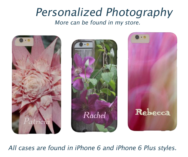 Personalized Photography iPhone 6 Cases